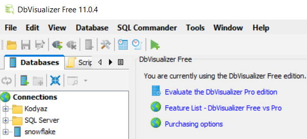 launch DbVisualizer free database management tool