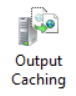 IIS Output Caching feature